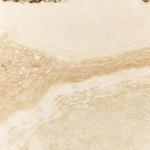 Tile Augusta Bone
